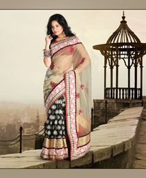 Picture of Beige Net Matka Printed Saree